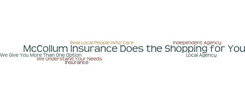 auto and home insurance shopping in philadelphia mccollum insurance
